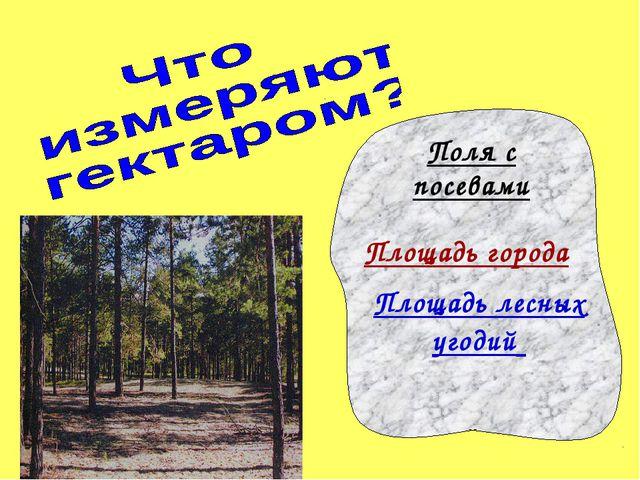 Поля с посевами Площадь лесных угодий Площадь города