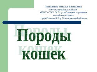 Прогалкина Наталья Евгеньевна учитель начальных классов МБОУ «СОШ № 2 с углуб