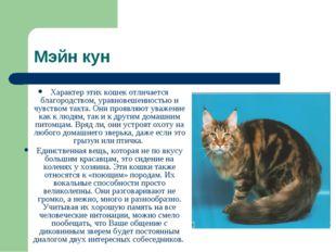 Мэйн кун Характер этих кошек отличается благородством, уравновешенностью и чу