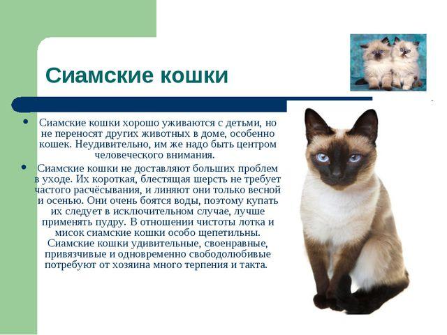 Сиамские кошки Сиамские кошки хорошо уживаются с детьми, но не переносят друг...