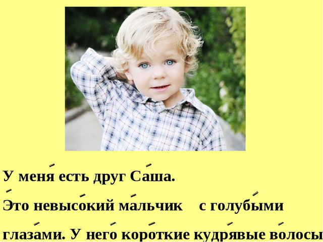 У меня есть друг Саша. Это невысокий мальчик с голубыми глазами. У него корот...