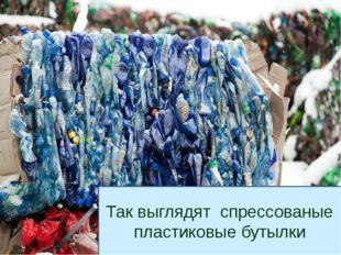 Так выглядят спрессованые пластиковые бутылки