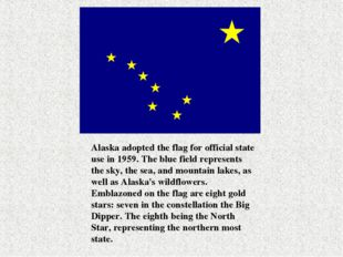Alaska adopted the flag for official state use in 1959. The blue field repres
