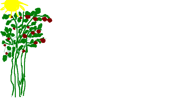 http://tnu.podelise.ru/pars_docs/refs/206/205114/205114_html_7fc78397.png