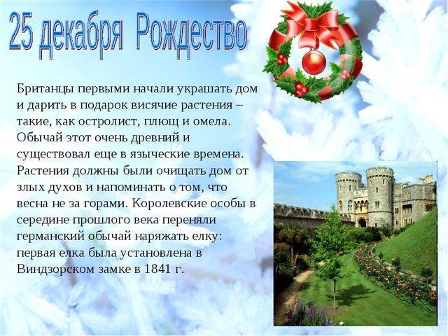 Британцы первыми начали украшать дом и дарить в подарок висячие растения – та...