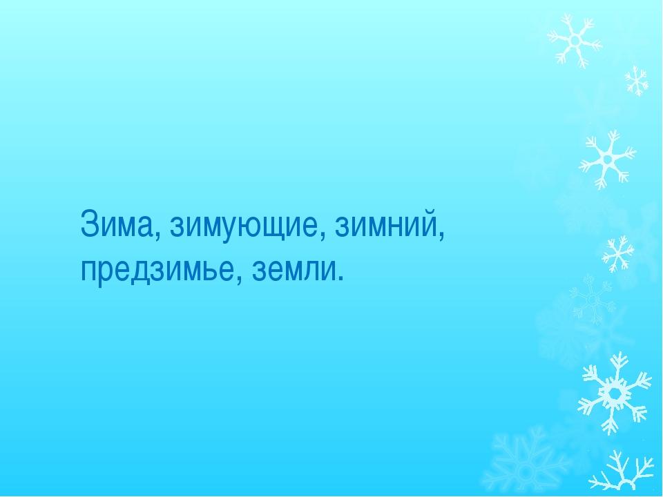 Зима, зимующие, зимний, предзимье, земли.