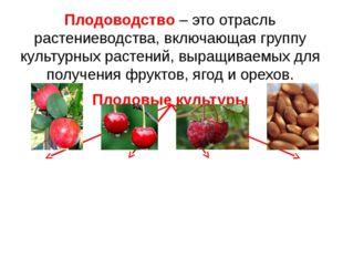 Плодоводство – это отрасль растениеводства, включающая группу культурных раст