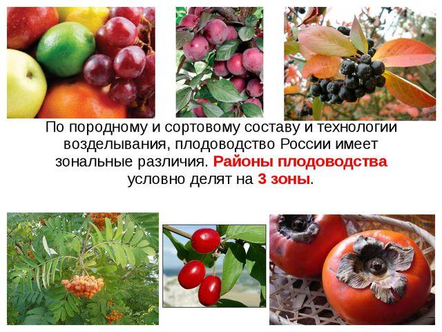 По породному и сортовому составу и технологии возделывания, плодоводство Росс...