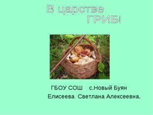ГБОУ СОШ с.Новый Буян Елисеева Светлана Алексеевна.