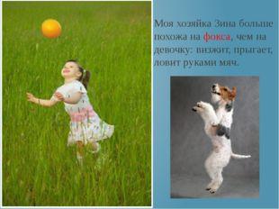 Моя хозяйка Зина больше похожа на фокса, чем на девочку: визжит, прыгает, лов