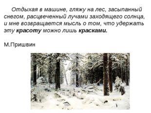 Отдыхая в машине, гляжу на лес, засыпанный снегом, расцвеченный лучами заходя