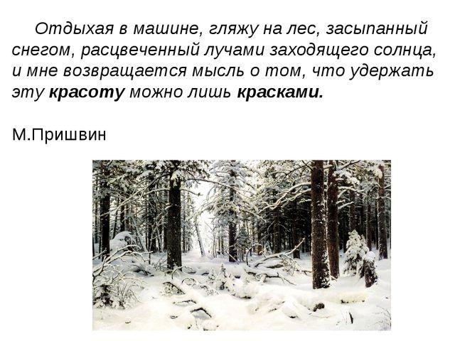 Отдыхая в машине, гляжу на лес, засыпанный снегом, расцвеченный лучами заходя...