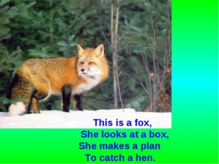 This is a fox, She looks at a box, She makes a plan To catch a hen.