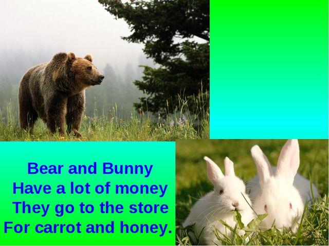 Bear and Bunny Have a lot of money They go to the store For carrot and honey.