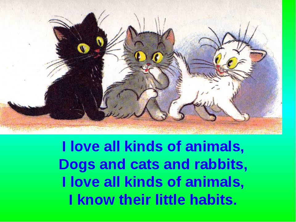 I love all kinds of animals, Dogs and cats and rabbits, I love all kinds of a...