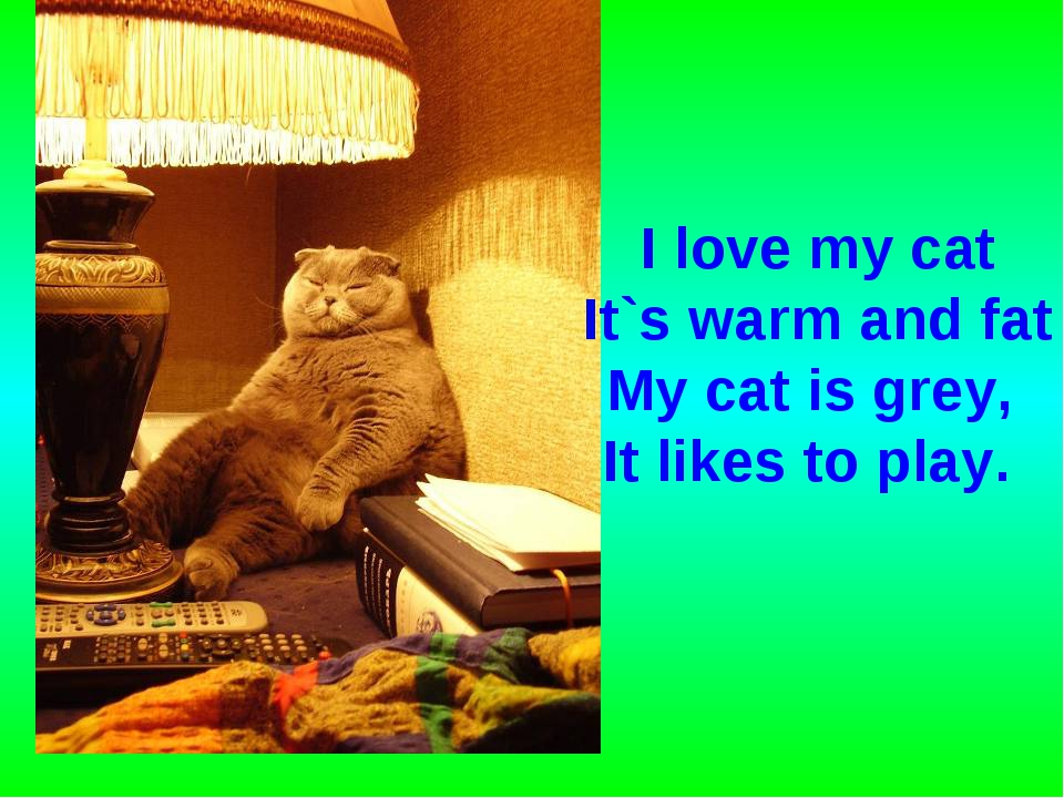 I love my cat It`s warm and fat My cat is grey, It likes to play.