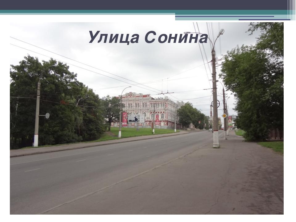 Улица Сонина