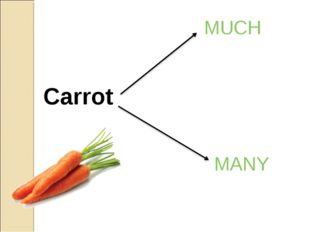 Carrot MUCH MANY