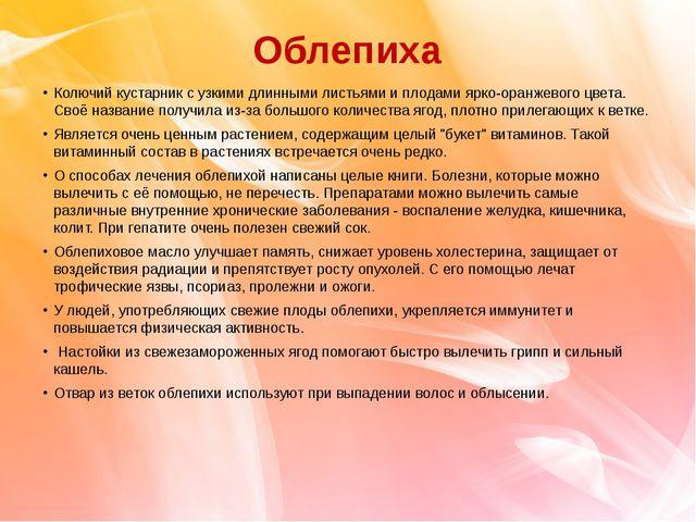 Облепиха Колючий кустарник с узкими длинными листьями и плодами ярко-оранжево...