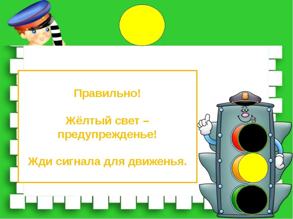 Правильно! Жёлтый свет – предупрежденье! Жди сигнала для движенья.