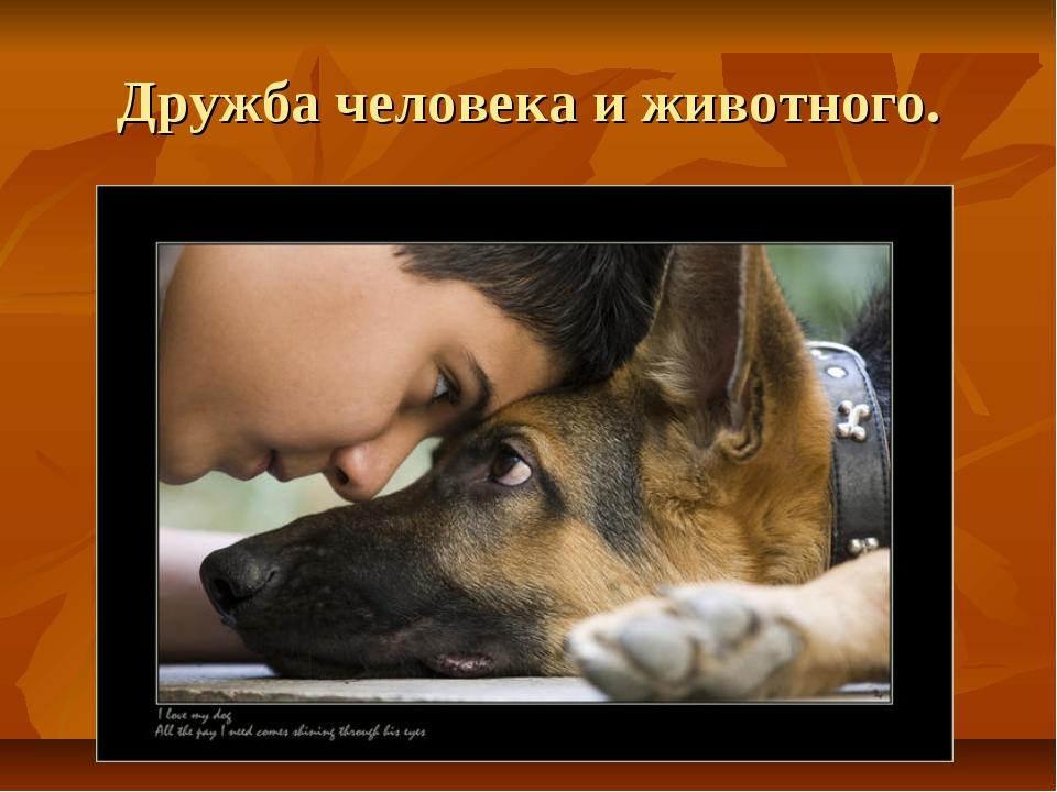 Дружба человека и животного.