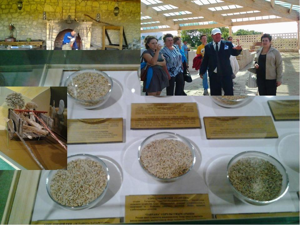 Музей хлеба в Булгарах