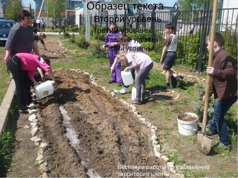 Весенние работы по озеленению территории школы