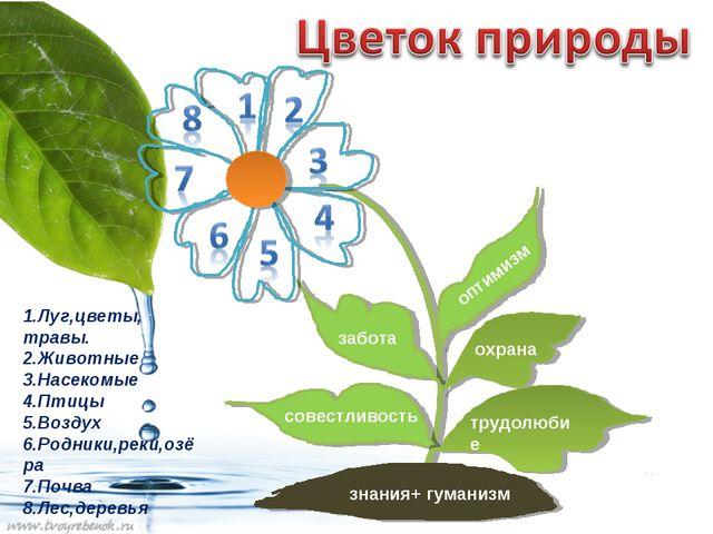 знания+ гуманизм трудолюбие охрана оптимизм забота совестливость 1.Луг,цветы,...