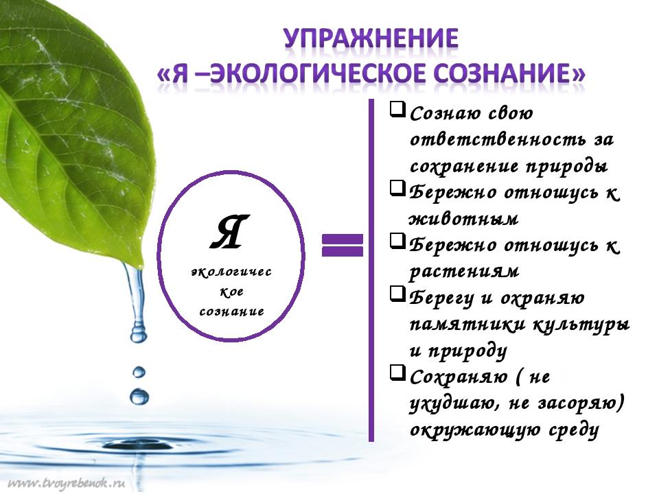 Я экологическое сознание Сознаю свою ответственность за сохранение природы Бе...