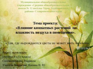 Тема проекта: «Влияние комнатных растений на влажность воздуха в помещении».