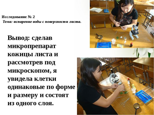 Исследование № 2 Тема: испарение воды с поверхности листа. Вывод: сделав микр...