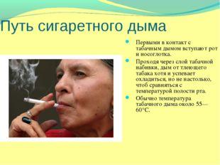 Путь сигаретного дыма Первыми в контакт с табачным дымом вступают рот и носог