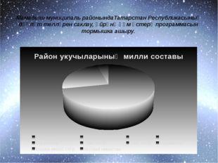 Мамадыш муниципаль районындаТатарстан Республикасының дәүләт телләрен саклау,