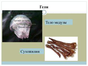 Гели Тело медузы Сухожилия