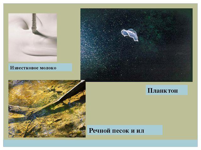Известковое молоко Планктон Речной песок и ил