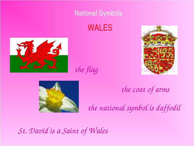 National Symbols WALES the flag the coat of arms the national symbol is daffo...