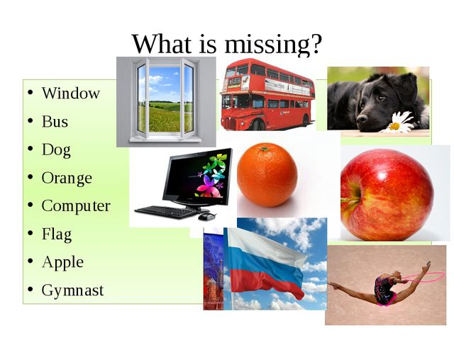 What is missing? Window Bus Dog Orange Computer Flag Apple Gymnast