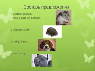 Составь предложения 1 a rabbit \ a hamster I'm not a rabbit. I'm a hamster. 2