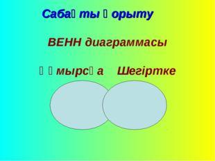 Сабақты қорыту ВЕНН диаграммасы Құмырсқа Шегіртке