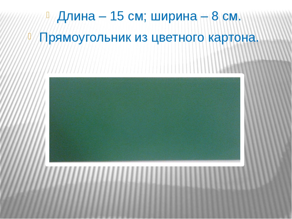 Длина – 15 см; ширина – 8 см. Прямоугольник из цветного картона.
