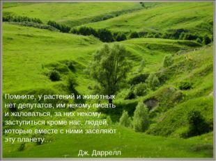 Помните, у растений и животных нет депутатов, им некому писать и жаловаться,