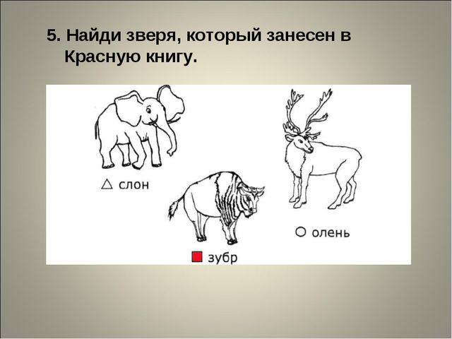 5. Найди зверя, который занесен в Красную книгу.