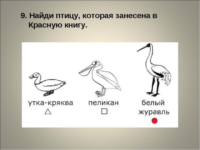 9. Найди птицу, которая занесена в Красную книгу.