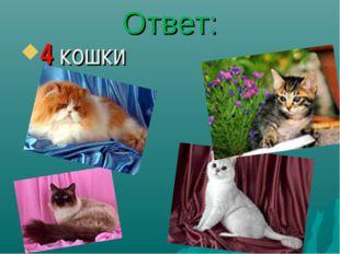Ответ: 4 кошки