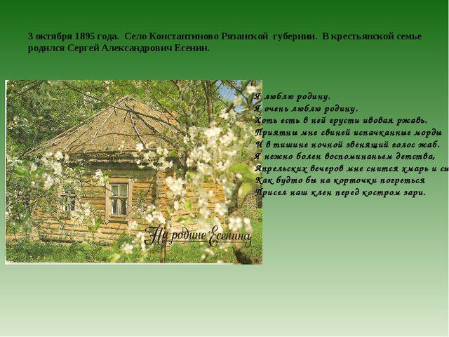 3 октября 1895 года. Село Константиново Рязанской губернии. В крестьянской се...