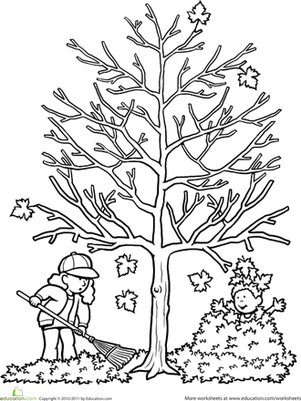 Autumn Tree Coloring Page Worksheet Education.com