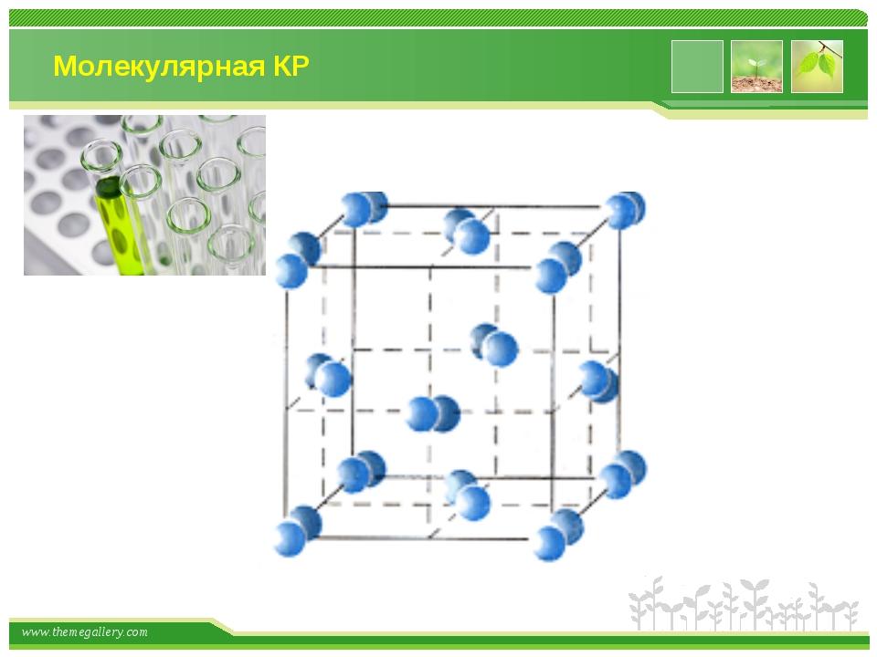 Молекулярная КР www.themegallery.com