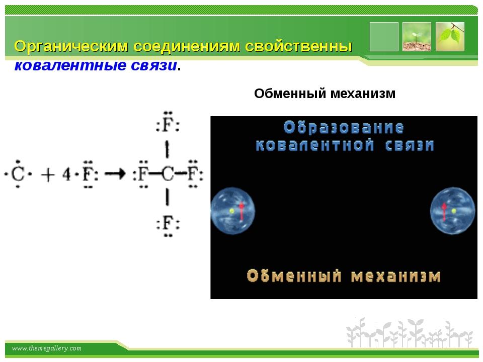 Органическим соединениям свойственны ковалентные связи. Обменный механизм www...