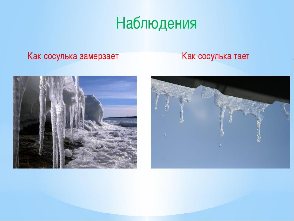Как сосулька замерзает Как сосулька тает Наблюдения