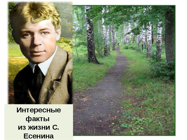 Интересные факты из жизни С. Есенина